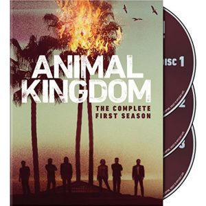 AU $25 BUY: Animal Kingdom - Season 1 on DVD in Australia