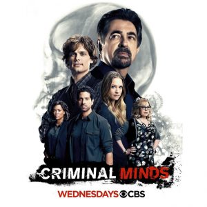 AU $35 BUY: Criminal Minds - Season 12 on DVD in Australia