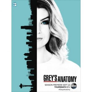 AU $30 BUY: Grey's Anatomy - Season 13 on DVD in Australia