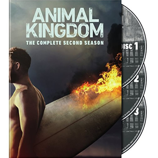 AU $33 BUY: Animal Kingdom - Season 2 on DVD in Australia