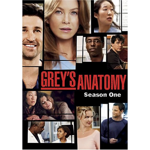 AU $20 BUY: Grey's Anatomy - Season 1 on DVD in Australia