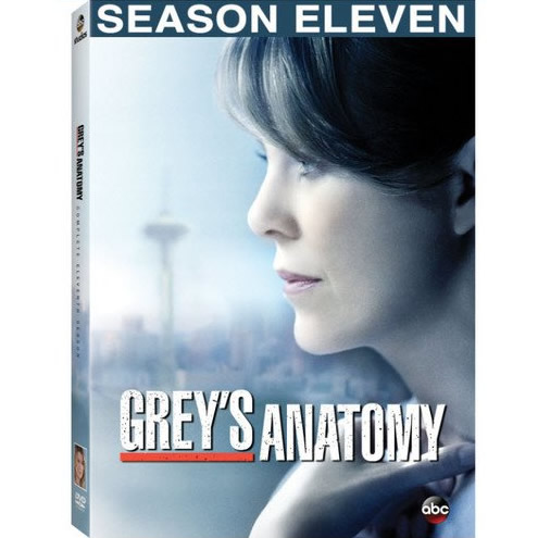AU $26 BUY: Grey's Anatomy - Season 11 on DVD in Australia