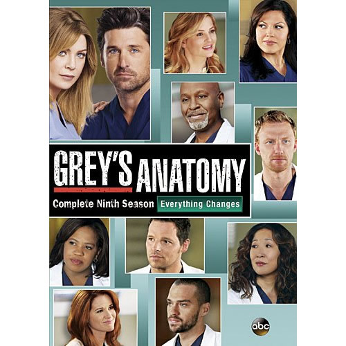 AU $25 BUY: Grey's Anatomy - Season 9 on DVD in Australia