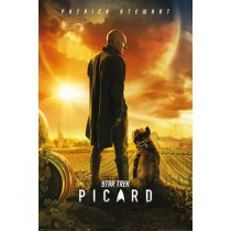 Star Trek: Picard Season 1 DVD For Sale
