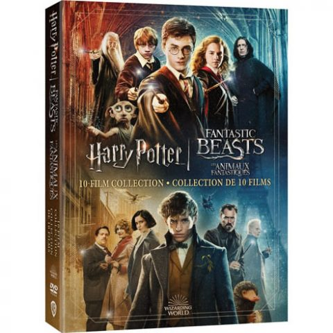 Wizarding World 10 Film Collection - Harry Potter & Fantastic Beasts DVD For Sale